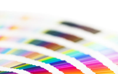 Why Your Brand's Color Palette Matters